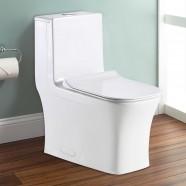 Toilette Monopièce à Double Chasse et à Action Siphonique (DK-ZBQ-12044C)