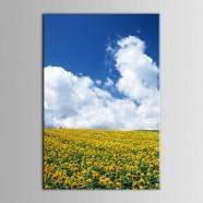 Peinture à l'Huile Imprimée sur Toile en Fibre Chimique - Paysage (DK-PH-DH23)