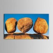 Peinture à l'Huile Imprimée sur Toile en Fibre Chimique sans Cadre - Nature Morte (DK-PH-DH42)