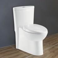 Toilette Monopièce à Double Chasse et à Action Siphonique (DK-ZBQ-12240)
