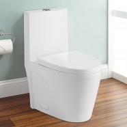 Toilette Monopièce Économique d'Eau en Céramique à Double Chasse (DK-ZBQ-12011)