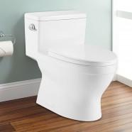 Toilette Monopièce Économique d'Eau en Céramique à Simple Chasse (DK-ZBQ-12234)