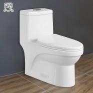 CUPC Toilette Monopièce Économique d'Eau en Céramique à Double Chasse (DK-ZBQ-12050)