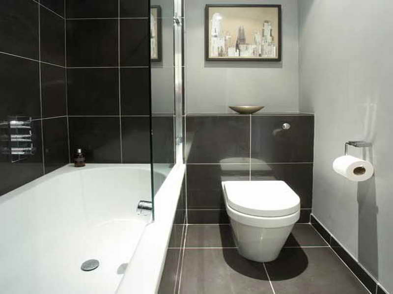 Blog compare one piece toilet with two piece toilet for Small bathroom designs bloggers